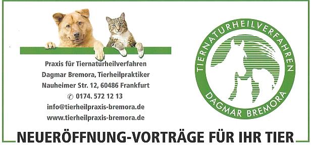 bockenheim aktiv informationen von und f r frankfurt bockenheim. Black Bedroom Furniture Sets. Home Design Ideas